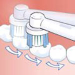 Clean the chewing surfaces slowly, taking a few seconds for each tooth</