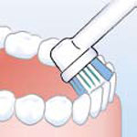 Move the brush slowly from tooth to tooth along the inner surfaces</